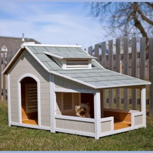 A Bungalow Dog House? I'll Bite